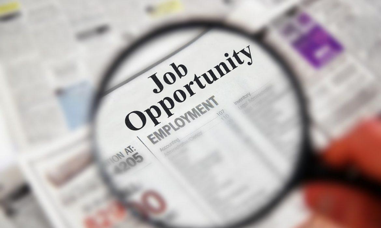 5 مرحله در کاهش زمان برای جستجوی فرصت شغلی | رزومه ال تی اس